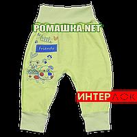 Штанишки на широкой резинке р. 68 демисезонные ткань ИНТЕРЛОК 100% хлопок ТМ Алекс 3297 Зеленый1