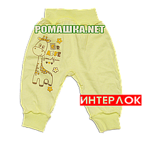 Штанишки на широкой резинке р. 74 демисезонные ткань ИНТЕРЛОК 100% хлопок ТМ Алекс 3297 Желтый