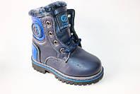 Зимняя обувь Clibee K96син