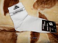 Носки  мужские    Sport socks  х\б Турция 36-40 (Ж.Е.Н.), фото 1