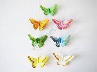 Бабочка на магните 10 см. (24 шт. в уп.)