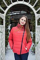 Весенняя женская куртка от производителя - модель 2017 - (кт-84)