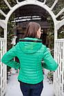Брендовая женская куртка от производителя на весну 2018 - (модель кт-89), фото 3