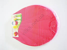 Сидушка унитазная пластмассовая 43 х 35 см.