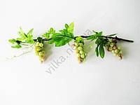 Лоза виноградная зеленая матовый виноград 59 см.