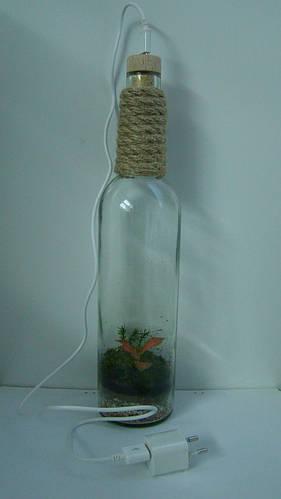 "Флорариум ""Винная бутылка"""