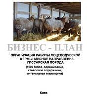 Бизнес - план (ТЭО).  Организация работы  животноводческой фермы. Выращивание овец. Овцеводство Мясное направление. Доращивание молодняка. 1000 голов. Гиссарская порода, Быстрый, Баланс спроса и предложения