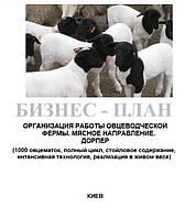 Бизнес - план (ТЭО).  Организация работы  животноводческой фермы. Выращивание овец. Овцеводство Мясное направление. Полный цикл. 1000 овцематок. Дорпер, Баланс спроса и предложения