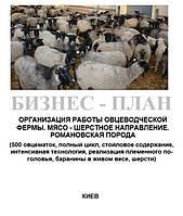 Бизнес - план (ТЭО).  Организация работы  животноводческой фермы. Выращивание овец. Овцеводство Мясо - шерстное направление. Полный цикл. 500 овцематок. Ровановская порода., Баланс спроса и предложения