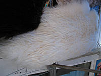 Шкура барана натуральная, фото 1