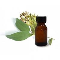 Алтайвитамины Масло миртовое - Бактерицидное и антисептическое средство