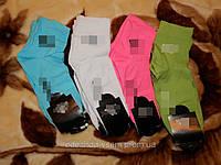 Носочки женские 015  (Ж.Е.Н.)