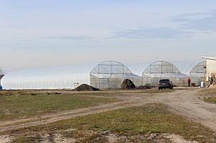 фермерские теплицы под пленку 9