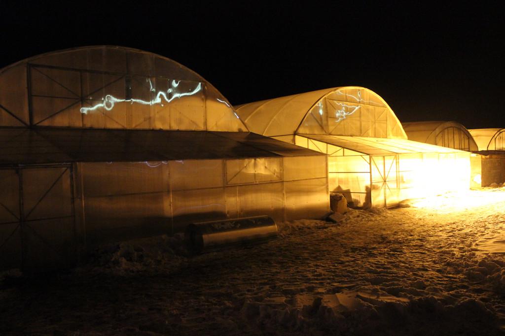 фермерские теплицы под пленку
