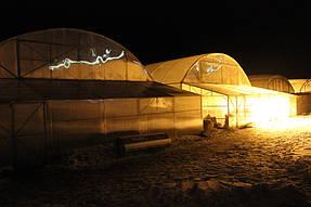 фермерские теплицы под пленку 12