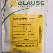 Семена моркови Боливар F1 (Clause) 100000 семян - среднепоздний гибрид (110-115 дней), тип Шантане, фото 3