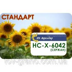 Семена подсолнечника (Юг Агролидер) НС-Х-6042