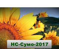 Семена подсолнечника (Юг Агролидер) НС Сумо 2017 стандарт