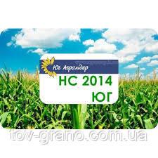Семена кукурузы (Юг Агролидер) НС 2014