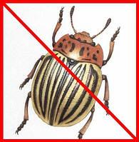 Кошти від колорадського жука