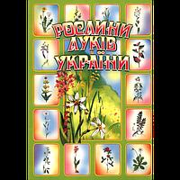 Рослини луків України, комплект наочності