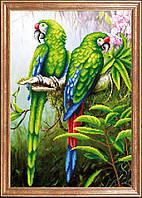 Рисунок на ткани для вышивки бисером Пара попугаев МК КС-094