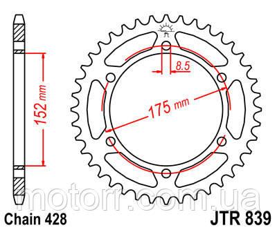 Задняя звезда JT JTR839.53