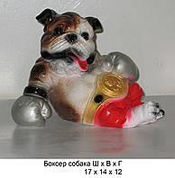 Копилка из гипса Собака боксер