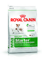 Royal Canin (Роял Канин) MINI STARTER - первый твердый корм для щенков мини пород, 8.5кг