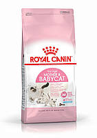 Royal Canin MOTHER & BABYCAT 4кг - корм для котят и беременных/кормящих кошек