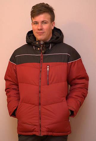 Куртка мужская зимняя на тинсулейте BRAGGART, фото 2