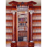 "Фотообои ""Библиотека"" 194х270 см"