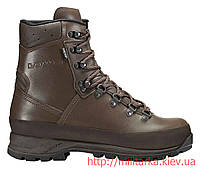 Ботинки LOWA Mountain GTX коричневые горные