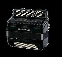 Баян SCANDALLI Conservatorio BJ/С442