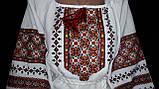 """Блуза женская """"Прикарпатские барвы"""", 42-60 р-ры, 660\570  (ціна за 1 шт. + 90 гр.), фото 3"""