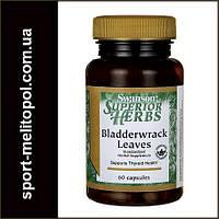 Swanson Bladderwrack Leaves 60 caps
