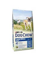 АКЦИЯ! DOG CHOW Large Breed.З індичкою д/собак 14кг
