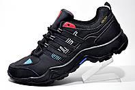 Мужские кроссовки Adidas Terrex Swift Gore-tex