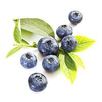 Ароматизатор Blueberry (Wild)  (Дикая черника), TPA/TFA ТПА, USA