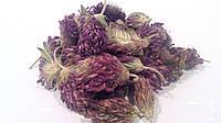 Клевер красный цветки 100 грамм (луговой)