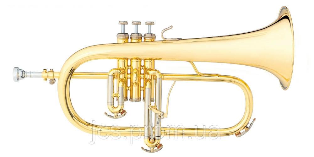 Флюгельгорн B&S 3145G-L