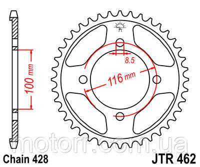 Звезда задняя JT JTR462.50