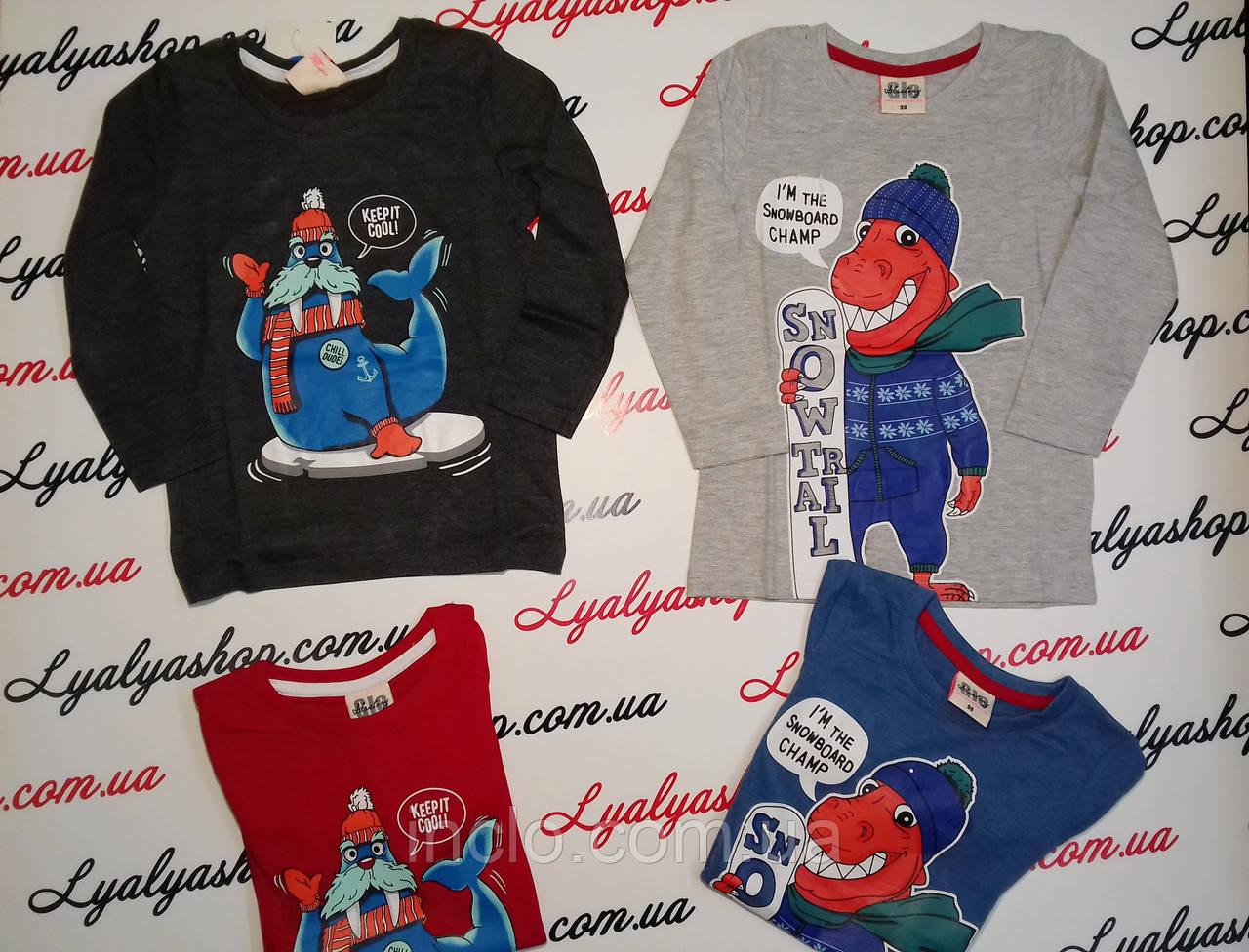 Батник для мальчиков   Glo-Story оптом 98-128 см. - Оптовый магазин детской одежды Ляля-шоп!   в Одессе