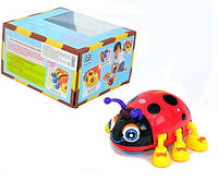 Детская музыкальная игрушка Жук 82721 ABCD