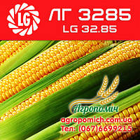 Кукуруза ЛГ 3285 (LG 32.85)