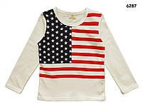 """Кофта """"Американский флаг"""" для мальчика. 100, 120, 130, 140 см"""