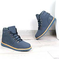 Ботинки Мужские зимние Timberland синие мех, зимняя обувь