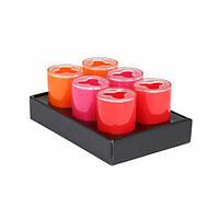 """Стакан для зубных щеток Axentia """"Graz"""" orange/pink/rot"""