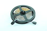 Светодиодная лента 12V-5050-60-led/m, IP65, 12lm 3chips Ledex