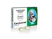 Caniverm (Каниверм) таблетки от глистов для собак и кошек до 2 кг